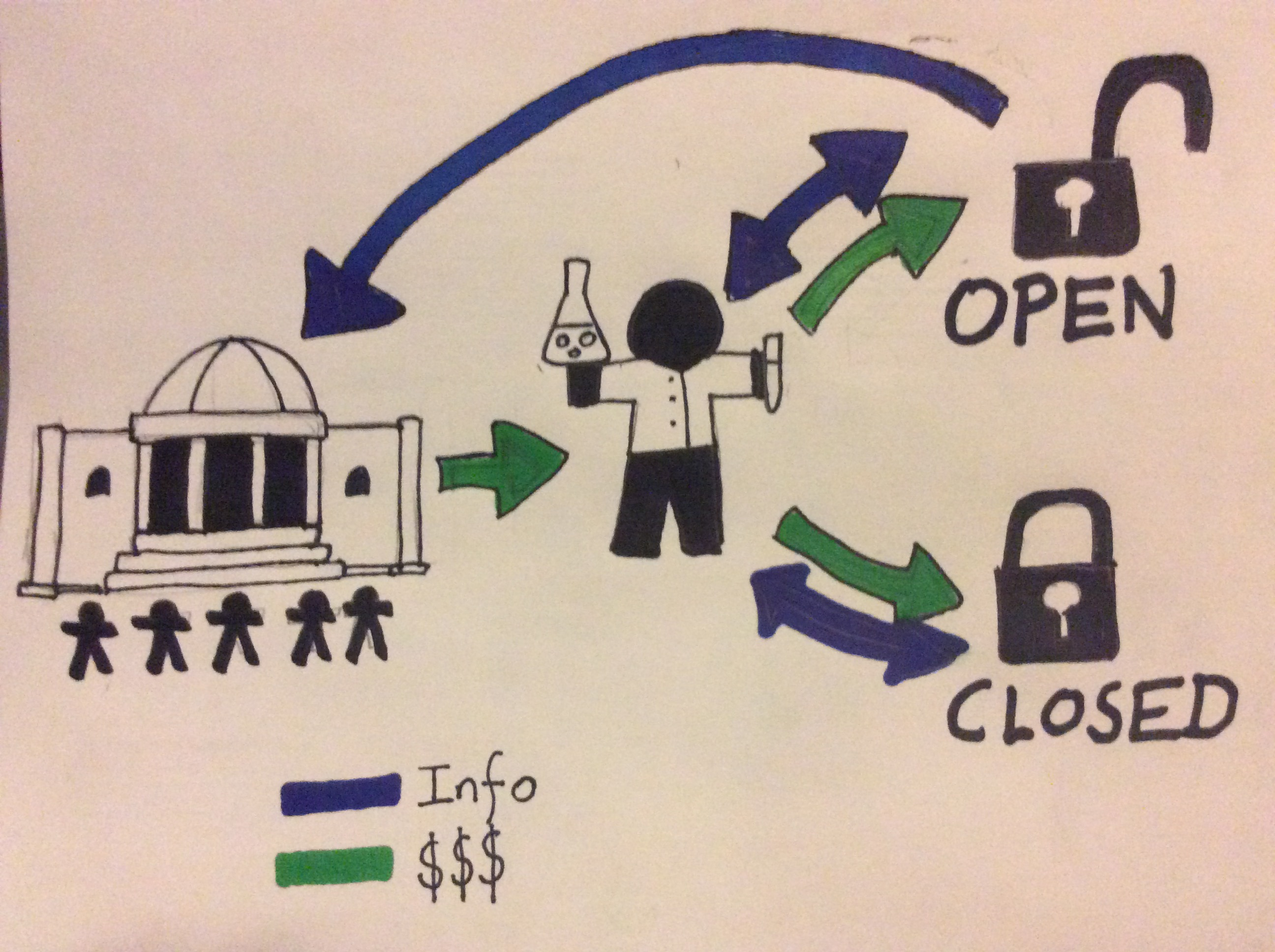 Open Science money and information flow